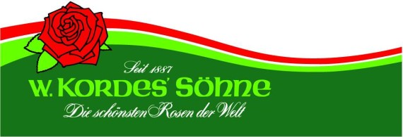 Logo_Wellev