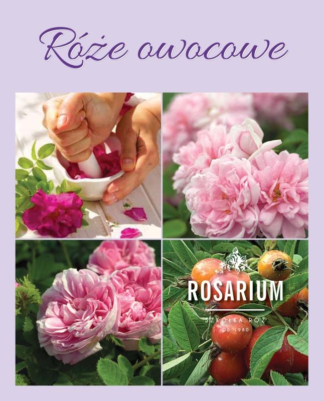 Roze owocowe-1