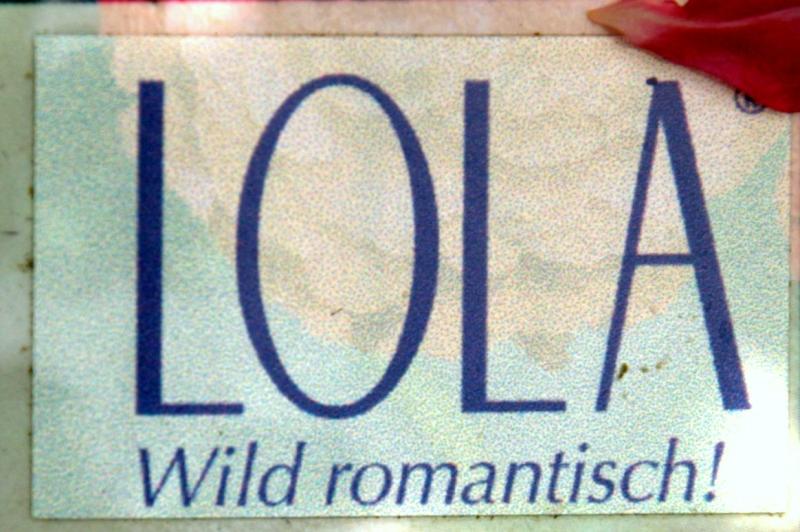 Lola® Starlet® Rosen