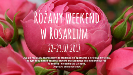 weekend_20171